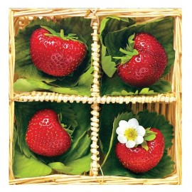 Greeting Card Strawberries 13x13cm