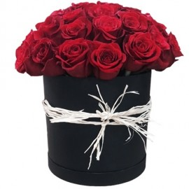 Red rose in a black flower box, cylindrical shape (only in Riga)