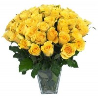 51 yellow rose 40 cm