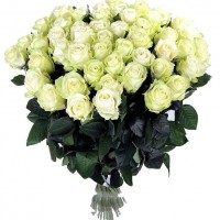 51 long white rose 70 cm