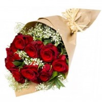 Red Rose Bouquet Kiss